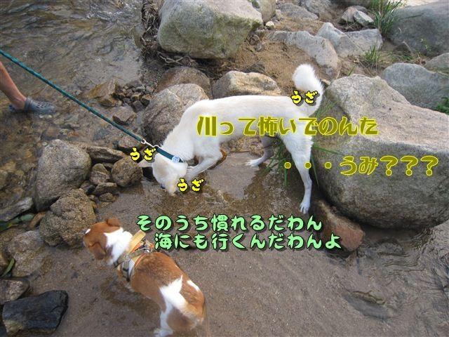 f:id:yasukazu01:20120727182231j:image