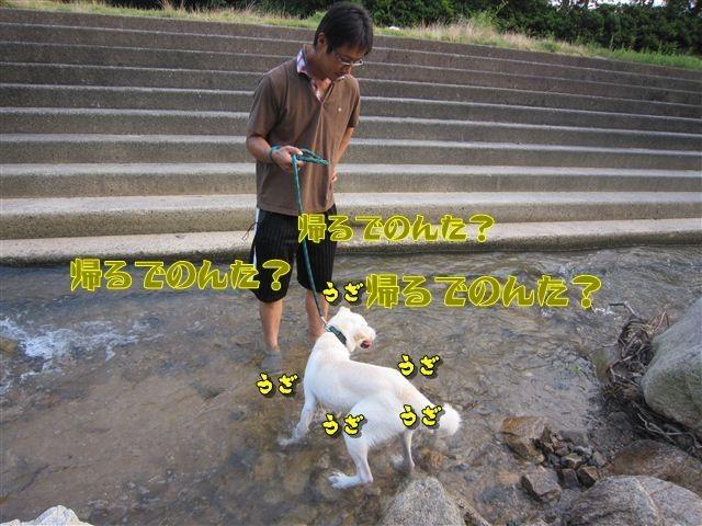 f:id:yasukazu01:20120727182249j:image