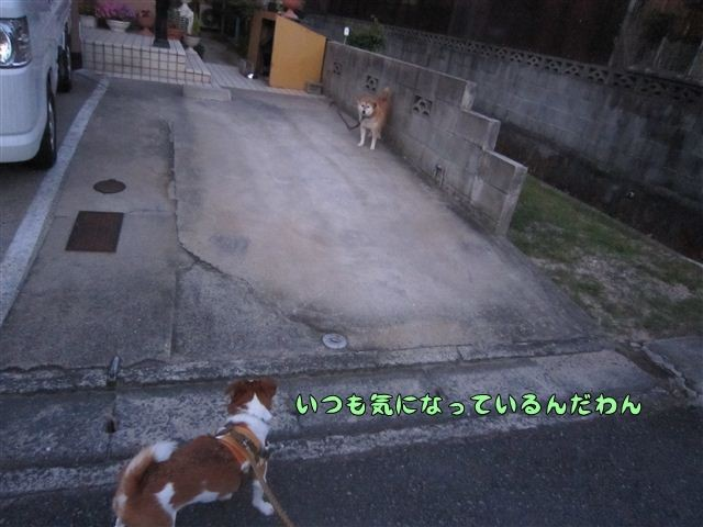 f:id:yasukazu01:20120730193324j:image