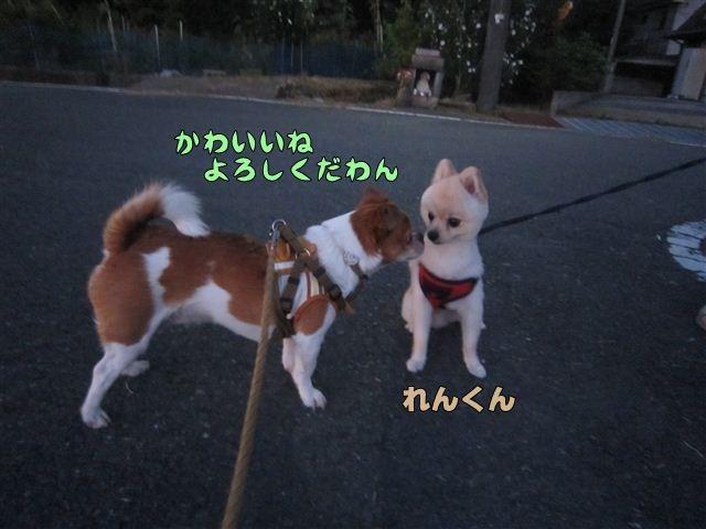 f:id:yasukazu01:20120730194034j:image