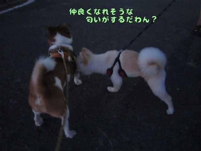 f:id:yasukazu01:20120730194234j:image
