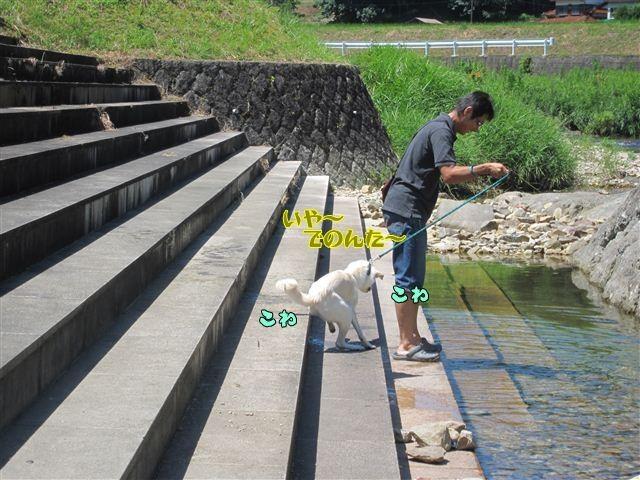 f:id:yasukazu01:20120731110707j:image