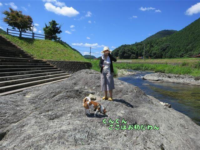 f:id:yasukazu01:20120731110744j:image