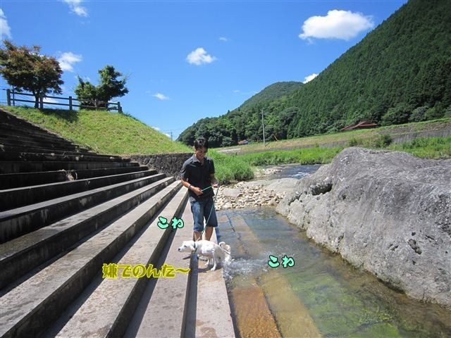 f:id:yasukazu01:20120731110806j:image