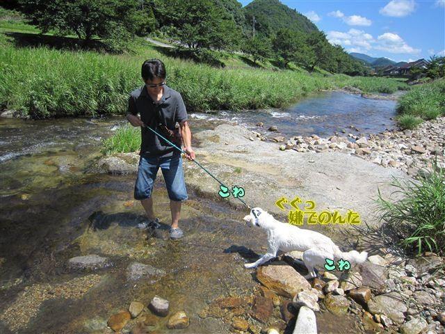 f:id:yasukazu01:20120731110842j:image