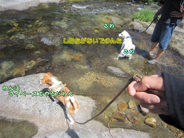 f:id:yasukazu01:20120731110851j:image