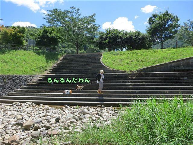 f:id:yasukazu01:20120731110914j:image