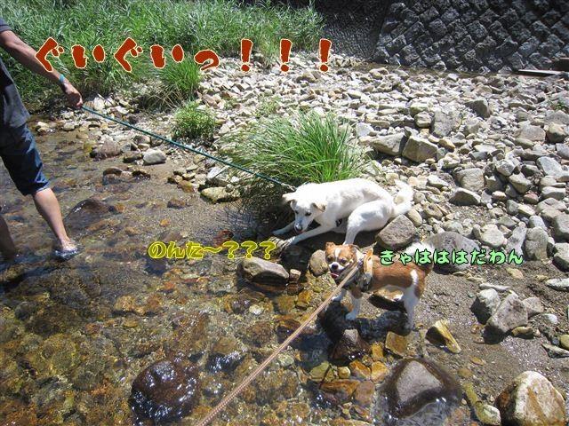f:id:yasukazu01:20120731111257j:image