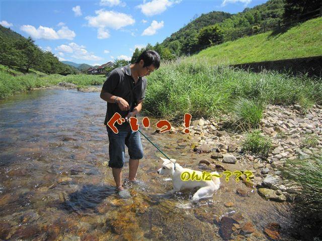 f:id:yasukazu01:20120731111304j:image