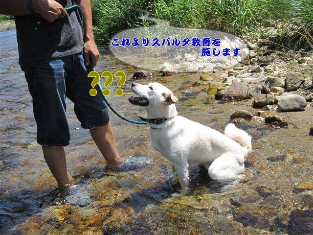 f:id:yasukazu01:20120731111310j:image