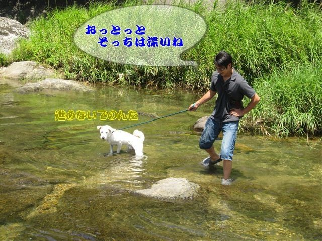 f:id:yasukazu01:20120731111750j:image