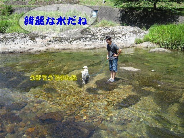 f:id:yasukazu01:20120731111802j:image