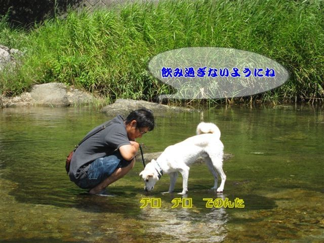 f:id:yasukazu01:20120731111858j:image