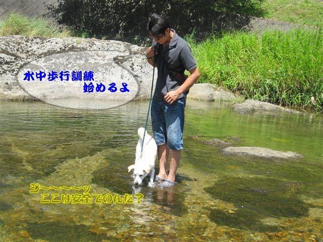 f:id:yasukazu01:20120731111954j:image