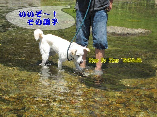 f:id:yasukazu01:20120731112010j:image