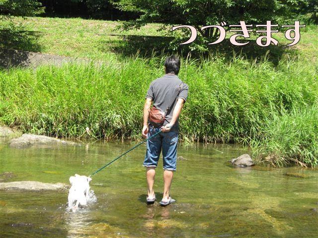 f:id:yasukazu01:20120731112041j:image