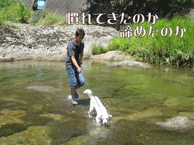 f:id:yasukazu01:20120731112158j:image