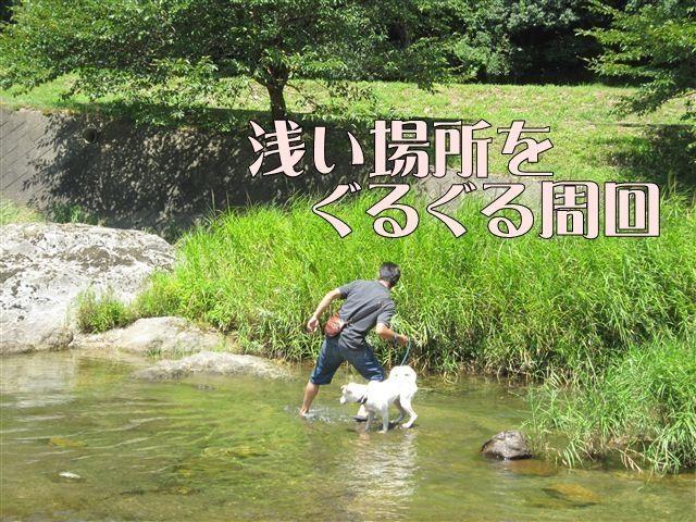 f:id:yasukazu01:20120731112250j:image