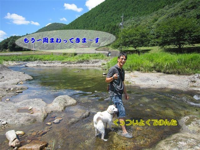 f:id:yasukazu01:20120731112506j:image
