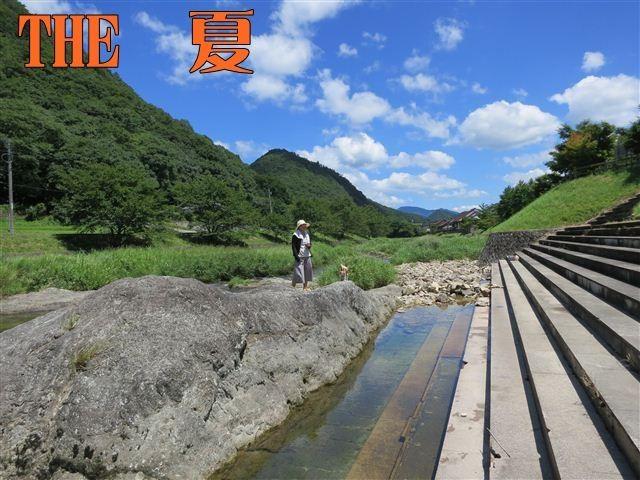 f:id:yasukazu01:20120731113929j:image