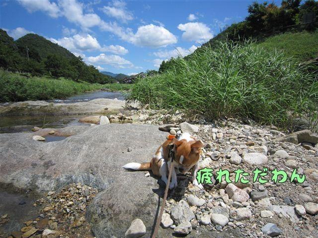 f:id:yasukazu01:20120731114041j:image