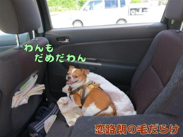 f:id:yasukazu01:20120731114233j:image