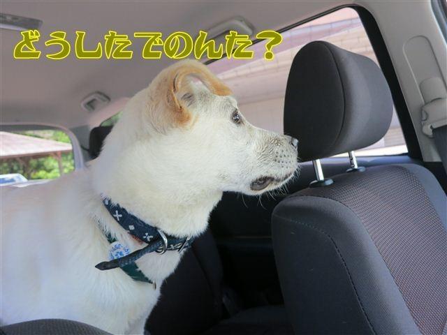 f:id:yasukazu01:20120731114907j:image