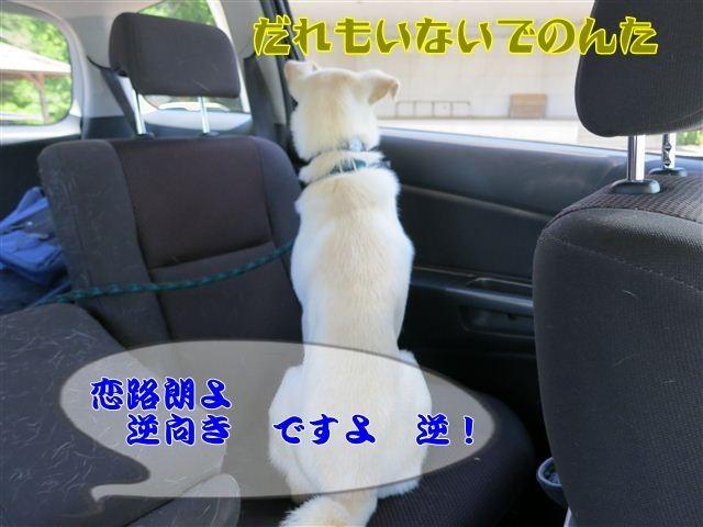 f:id:yasukazu01:20120731114957j:image