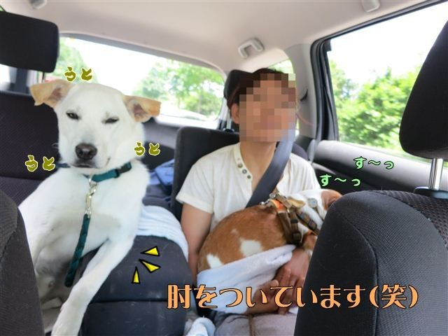 f:id:yasukazu01:20120731121448j:image