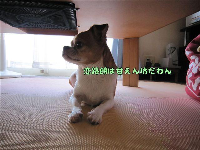 f:id:yasukazu01:20120731175828j:image