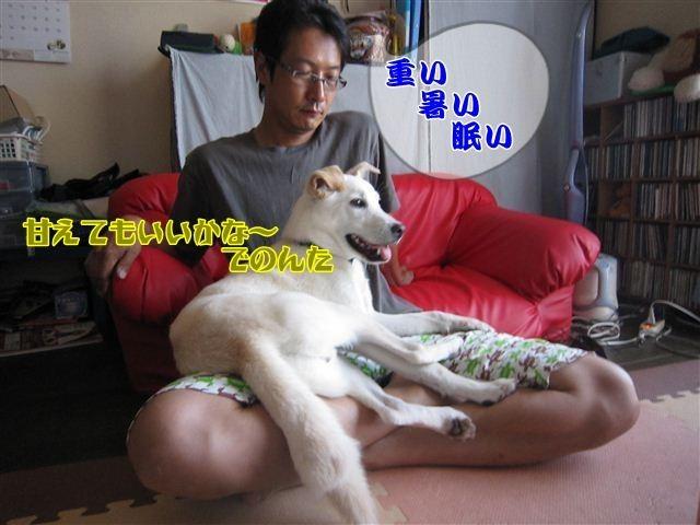 f:id:yasukazu01:20120731180138j:image
