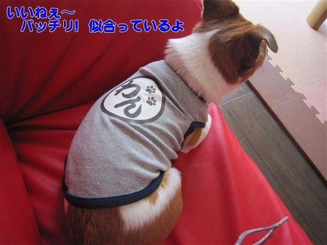 f:id:yasukazu01:20120801123939j:image