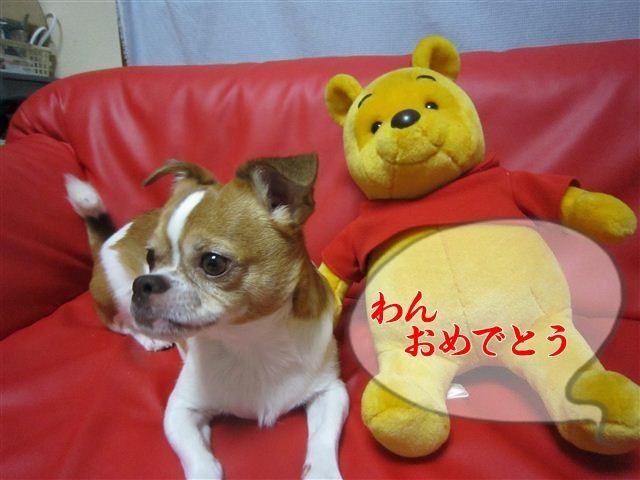 f:id:yasukazu01:20120801195411j:image