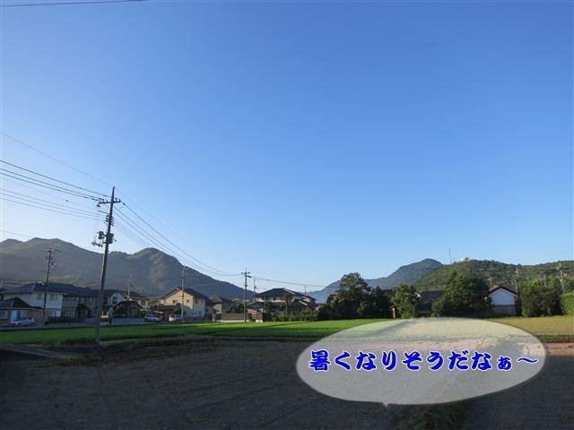 f:id:yasukazu01:20120803064344j:image