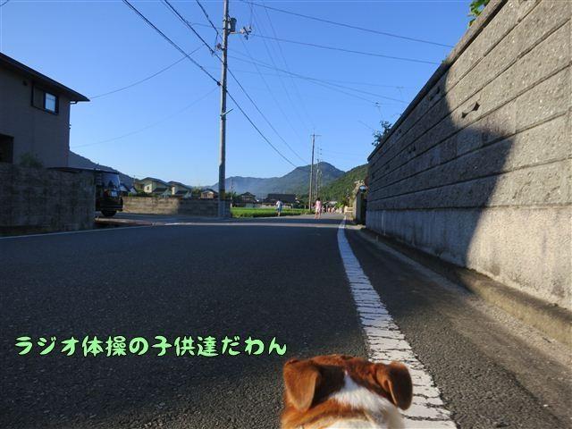 f:id:yasukazu01:20120803064631j:image