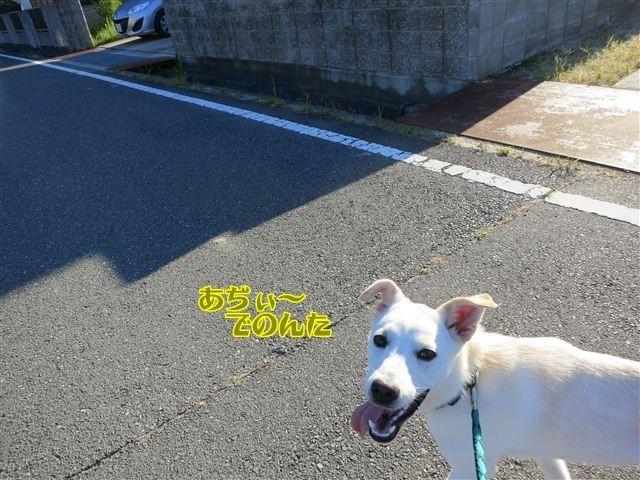 f:id:yasukazu01:20120803070754j:image