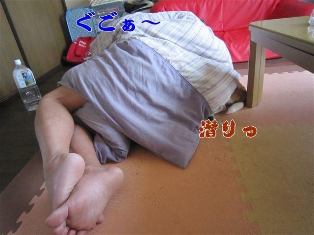 f:id:yasukazu01:20120803170734j:image