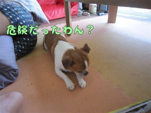 f:id:yasukazu01:20120803171503j:image
