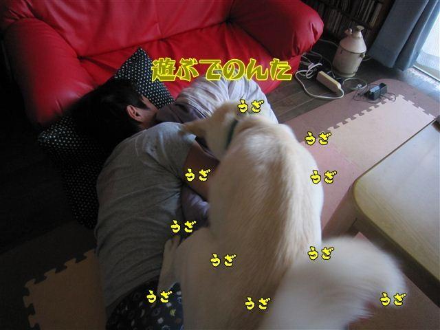f:id:yasukazu01:20120803173904j:image