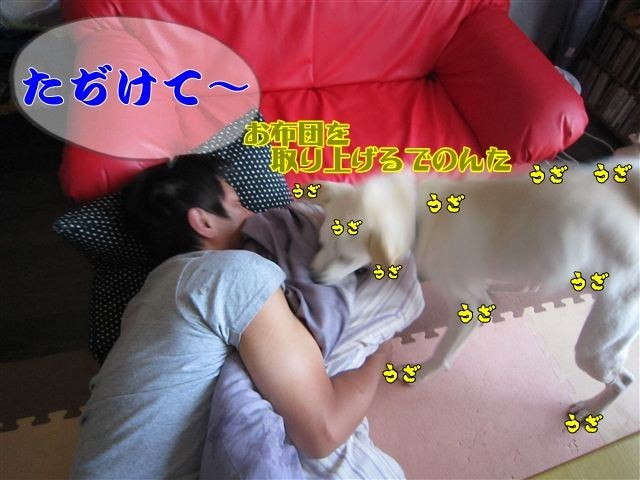 f:id:yasukazu01:20120803173910j:image