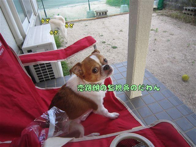 f:id:yasukazu01:20120805181346j:image