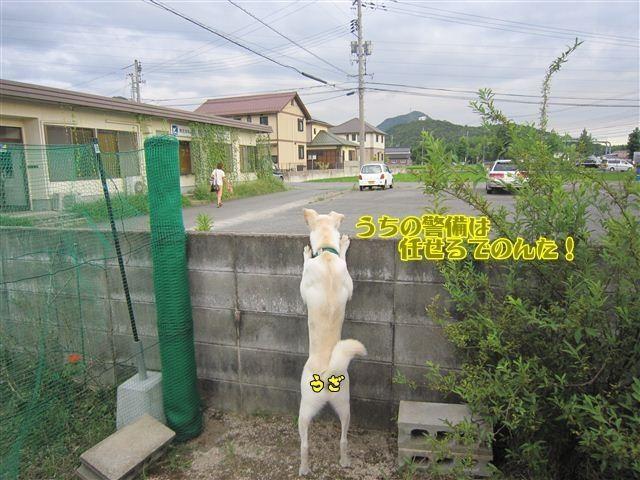 f:id:yasukazu01:20120805182610j:image