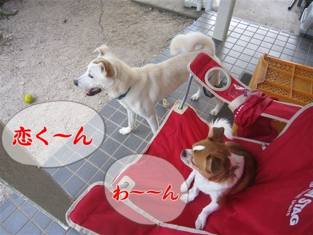 f:id:yasukazu01:20120805182859j:image