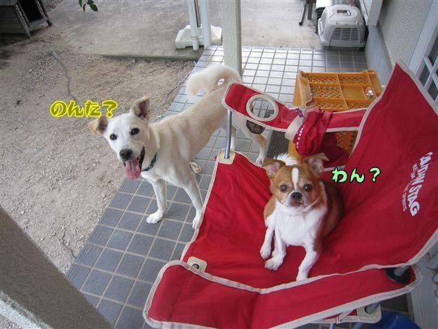 f:id:yasukazu01:20120805182905j:image
