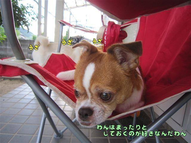 f:id:yasukazu01:20120805183026j:image
