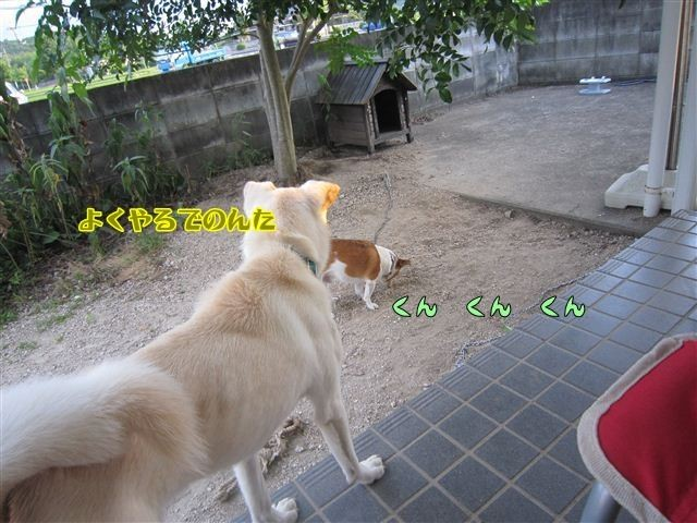 f:id:yasukazu01:20120805185019j:image