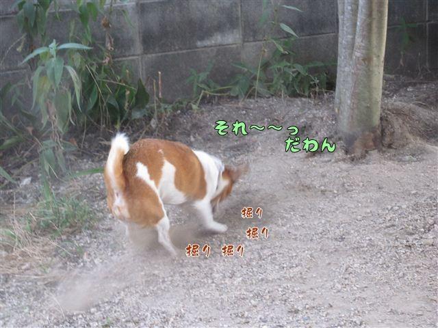 f:id:yasukazu01:20120805185226j:image
