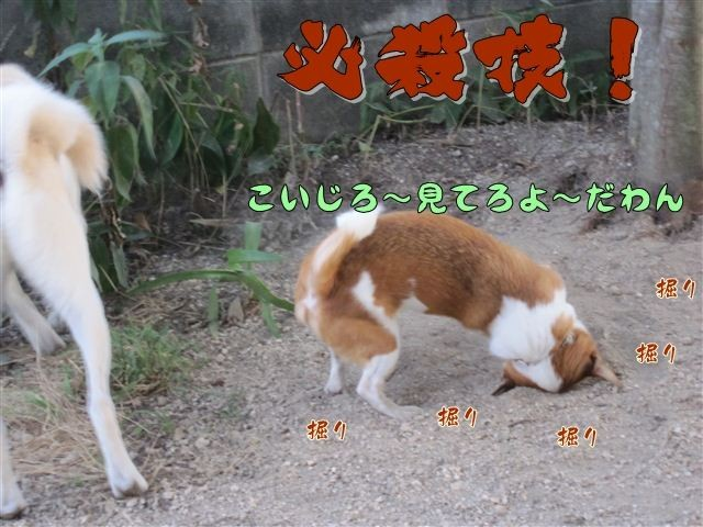 f:id:yasukazu01:20120805185302j:image
