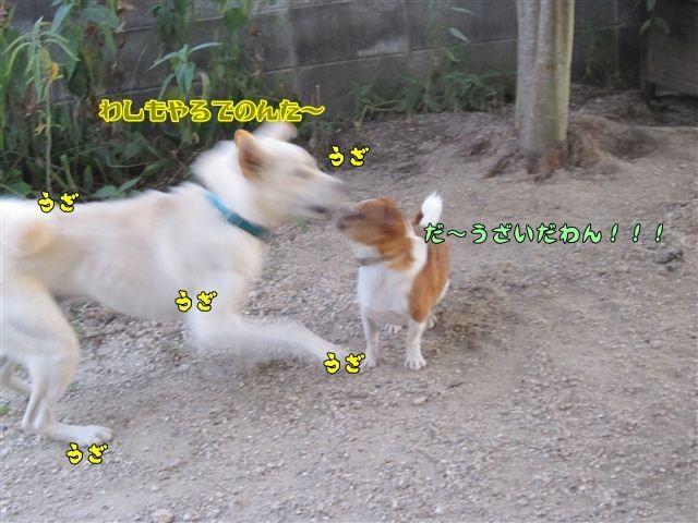 f:id:yasukazu01:20120805185352j:image