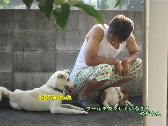 f:id:yasukazu01:20120808170350j:image